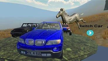 Safari VR